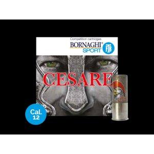 Bornaghi Cesare 24, 12/70